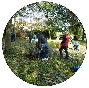 Bulb planting in Ecclesfield Park